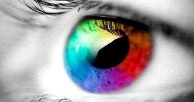 El color y sus propiedades.