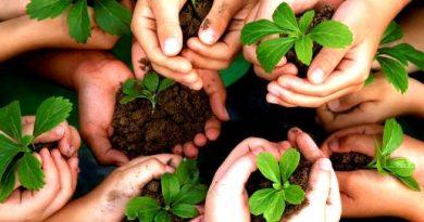 GAIA: Problemas medioambientales.